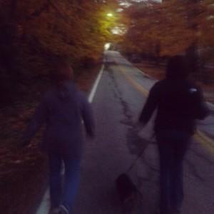 Crisp, fall evening walk.